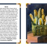 maize1