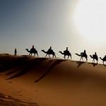 sahara-desertBachmont