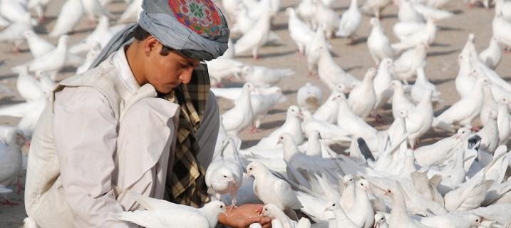 Afghanistan-Peace