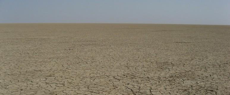 plain-desert