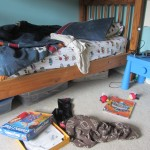 10142013-7-must-read-books-for-kids-with-messy-rooms-amymascott