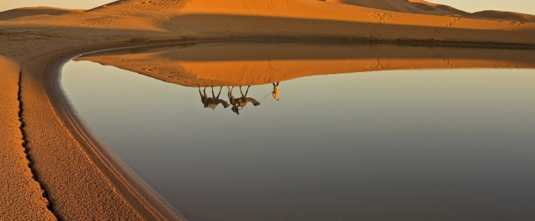 deserts-Sahara-cr-GettyImages-74732427