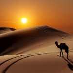 The-most-beautiful-desert-landscapes-of-the-World33__880