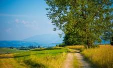 polish-countryside-road_1426-1747